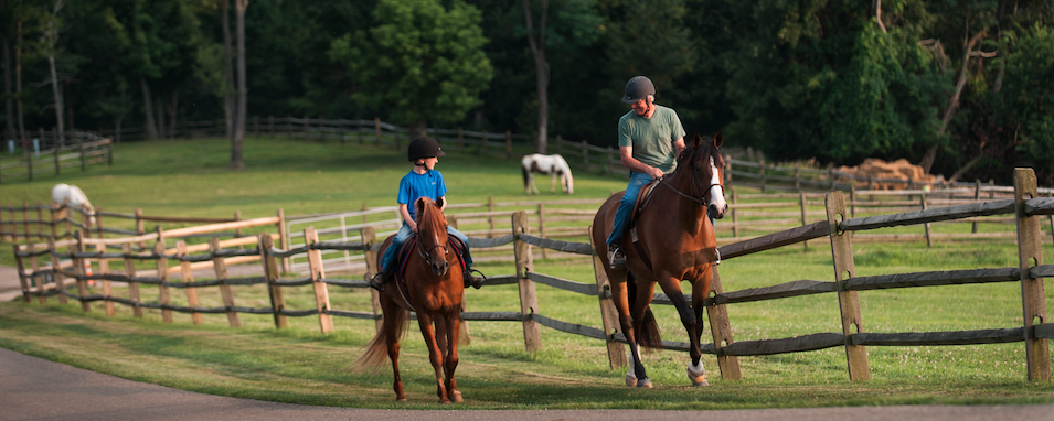 5 horseback riding trails where 4 legs are better than 2 image