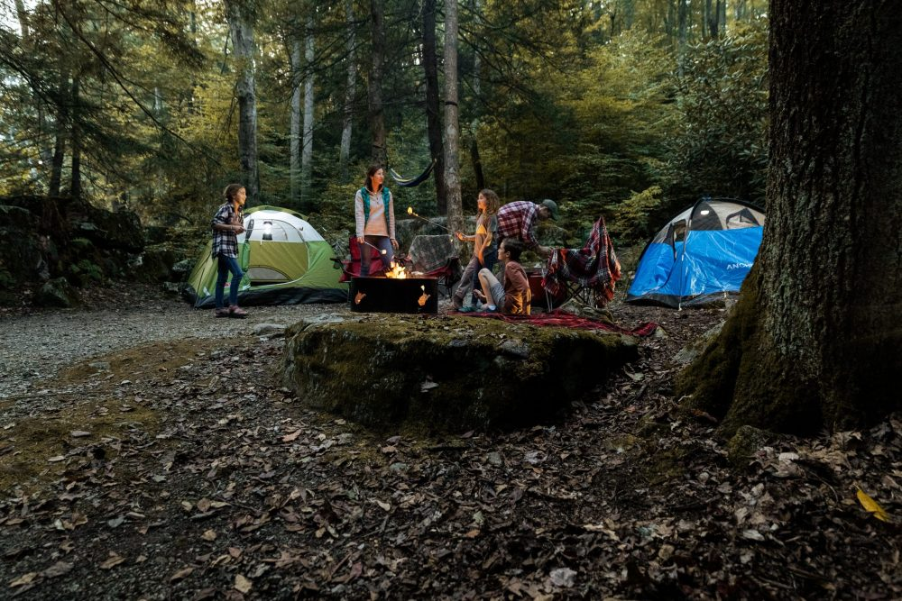 7 off-the-grid camping spots in WV image