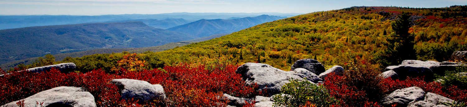 Adventure Advisory: Fall Foliage, Festivals and Flavors hero image