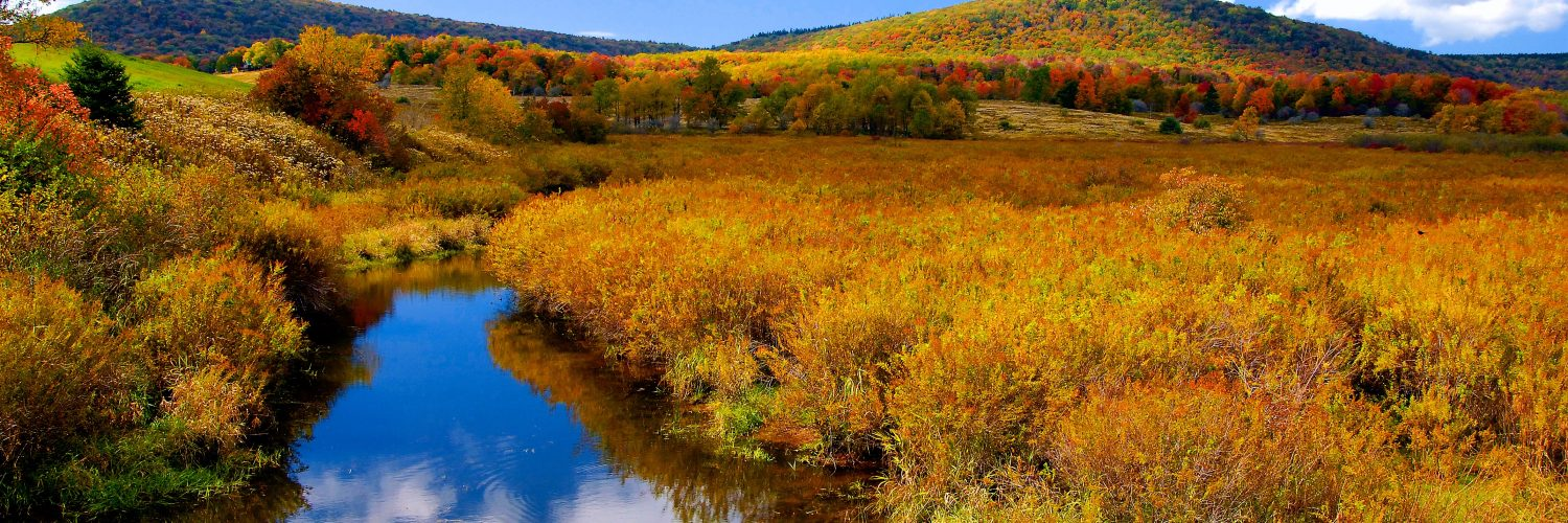 Get a Glimpse of Almost Heaven's Unforgettable Fall Views image